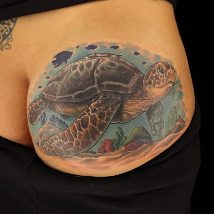 Seat turtle cover up tattoo by tattoo artist halo from ink for Tattoos by halo