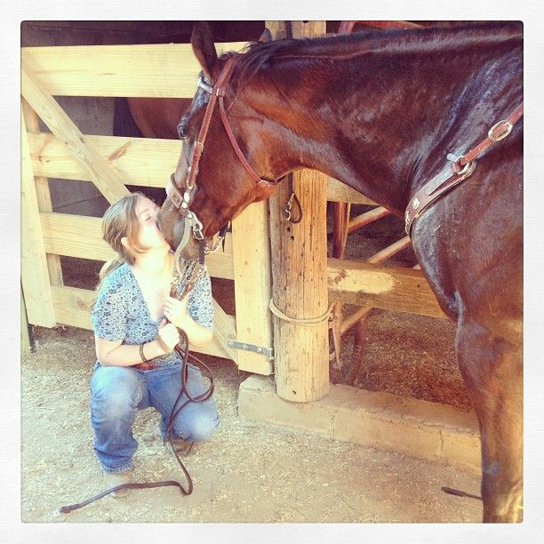 """Doing his """"kiss"""" trick. I was holding the reins because Bay-Bay in his stall kept trying to bite them lol"""