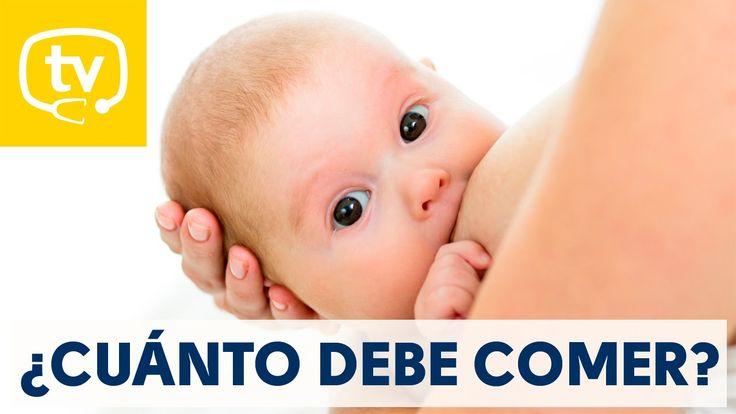 ¿Cuánto debe comer un bebé lactante?