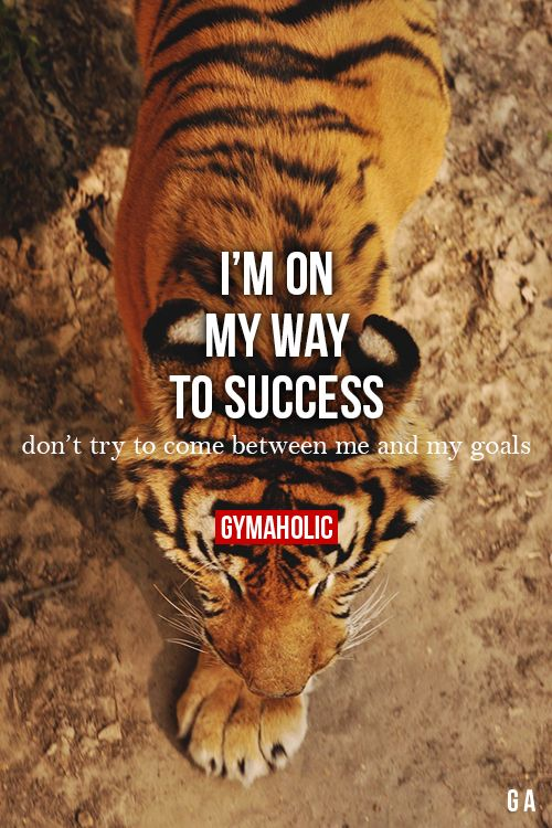 I'm On My Way To Success More fitness -> http://www.gymaholic.co/ #fit #fitness #fitblr #fitspo #motivation #gym #gymaholic #workouts #nutrition #supplements #muscles #healthy