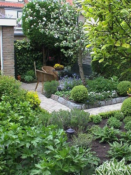 Kleine tuin met fruitboom