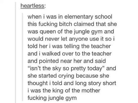 King of the jungle gym, tumblr funny
