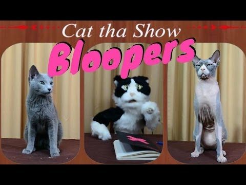 BeRi Show - Αστεία Bloopers από το βίντεο Cat The Show