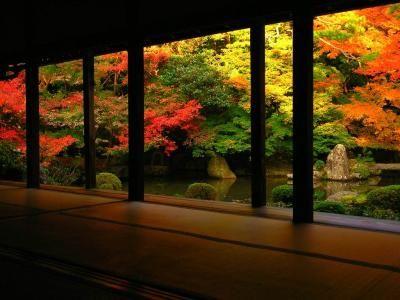 kabekami.net - 日本庭園 秋 1024 x 768
