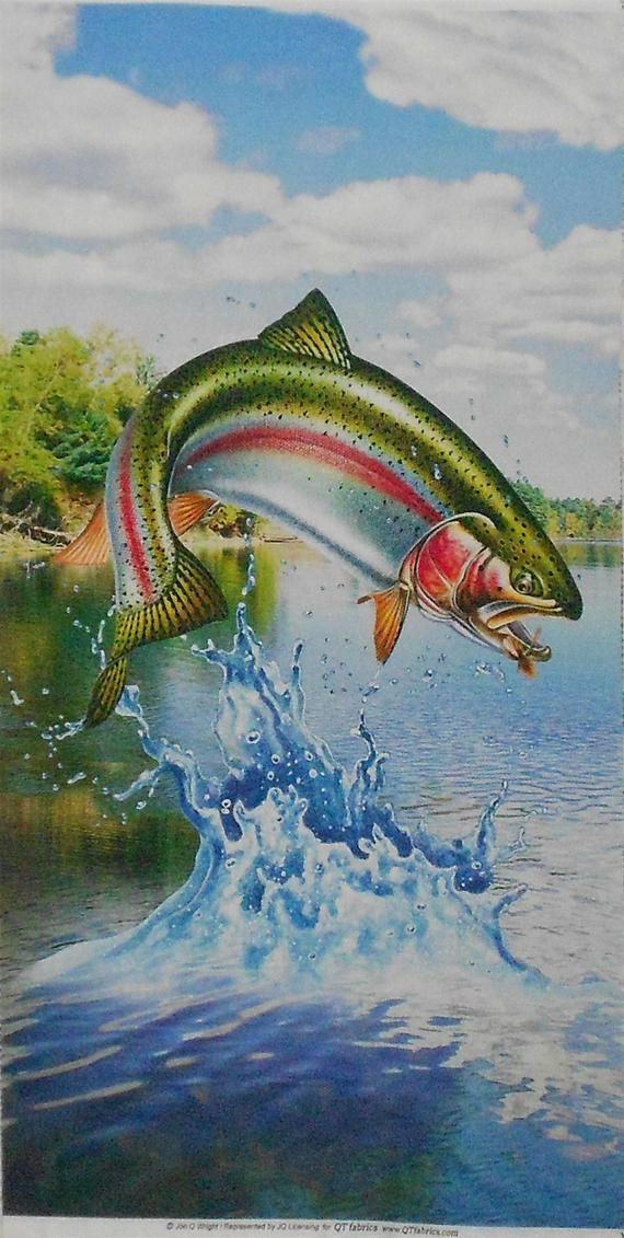 Trout Fabric Panel Rainbow Etsy Fabric Panels Quilt Shop Trout Fish