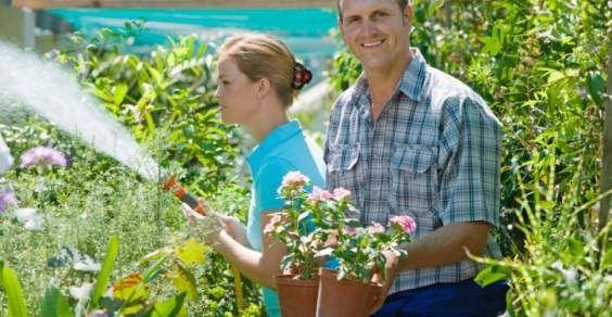 Innaffiare le piante: 8 consigli per risparmiare acqua e irrigare meglio