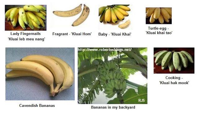 Recipes: Fruit of Thailand - 1. - Banana (Klūai)