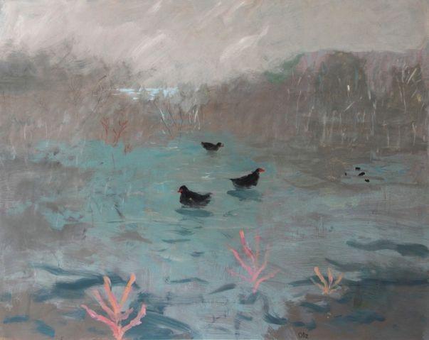 David Pearce, Marsh Hens