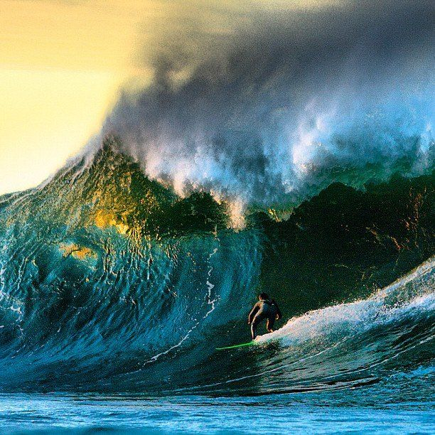Gorgeous sport... Imagine how thrilling it must have been to ride that wave!
