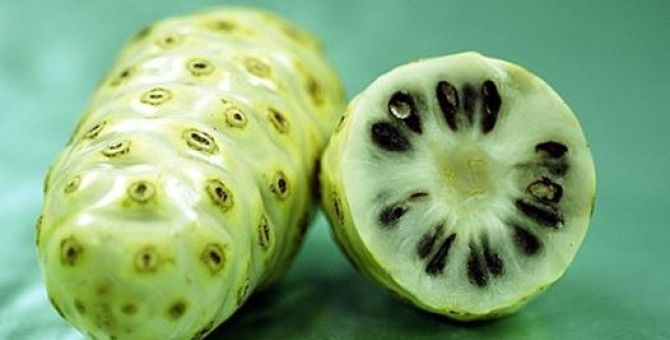 Do not think about the smell, noni fruit is very good for health.