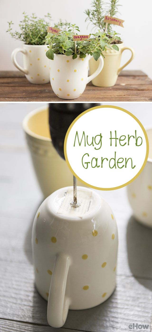 This  herb garden is as cute as possible! Grow the perfect spring and summer time herbs like fresh oregano, rosemary and thyme in adorable mugs. Your kitchen window sill just upgraded. These also make GREAT housewarming gifts! http://www.ehow.com/how_12343244_make-mug-herb-garden.html?utm_source=pinterest.com&utm_medium=referral&utm_content=freestyle&utm_campaign=fanpage