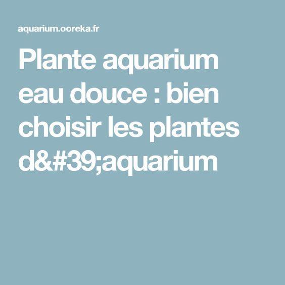 Plante aquarium eau douce: bien choisir les plantes d'aquarium