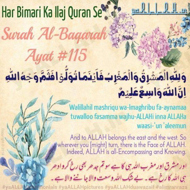 Surah Baqara Ayat 115 With Urdu Translation Quran The Cure Harness