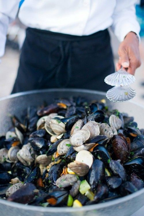 We collect & cook mussels like this a lot on the beach.