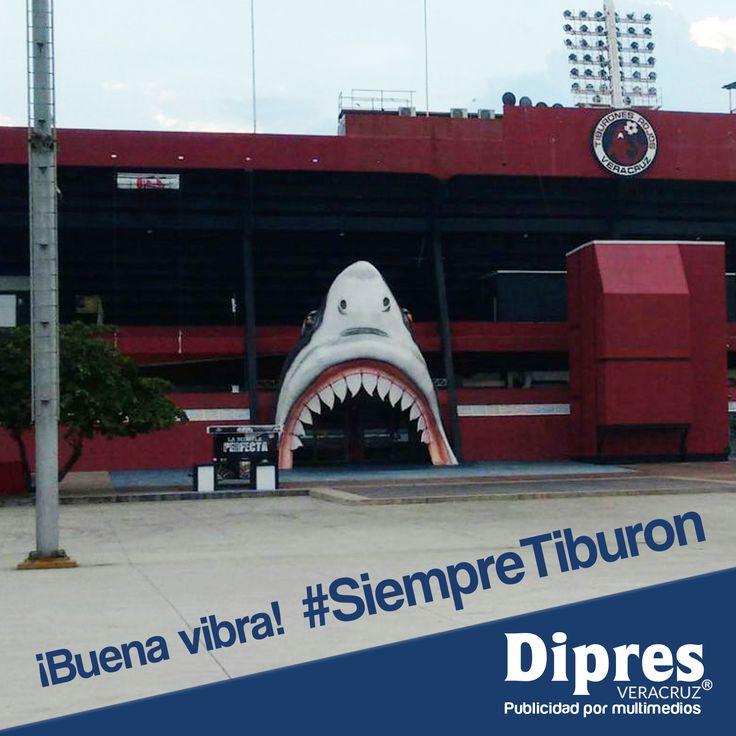 ¡Apoyemos a nuestro equipo! Buena vibra Tiburones Rojos de Veracruz #SiempreTiburon #Futbol #Dipres #DipresVeracruz #Publicidad #Veracruz #BocaDelRío #Xalapa #VerBoca #BocaVer