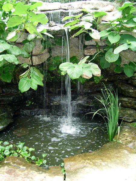 17 best images about garden pond on pinterest gardens for 90 gallon pond liner