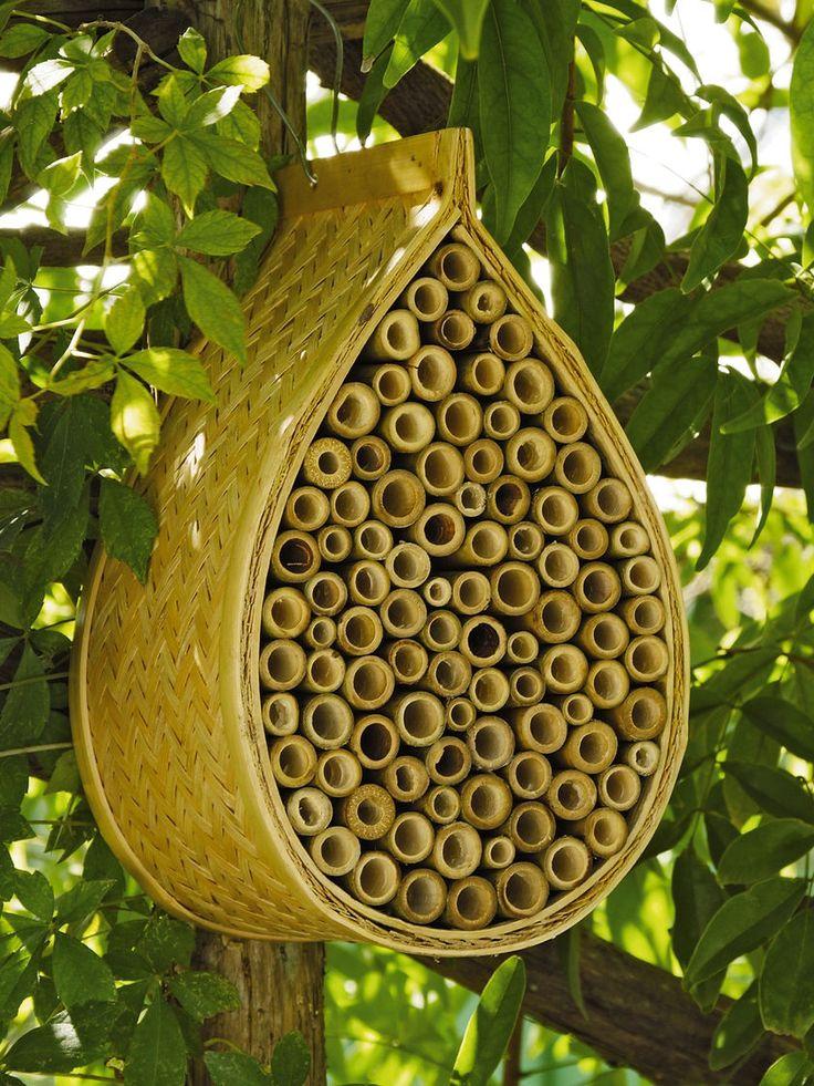 http://www.gardeners.com/buy/mason-bee-house/37-481.html