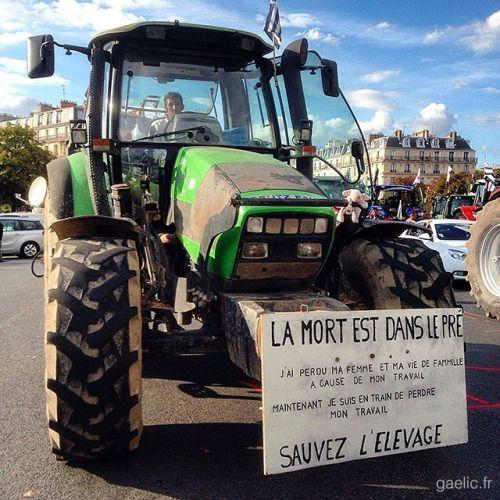2015-09-03 #France #Paris La mort est dans le pré #manif #agriculteur #eleveur #elevage #paysan #colere #agriculture #report #reportage #photojournalism #streetphotography #tractor #protest #demonstration #cityscape #latergram #reminder #iphone #gaelic69 (à Place de la Nation)
