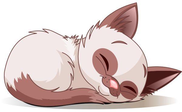 This adorable kitten just needs a short cat nap.