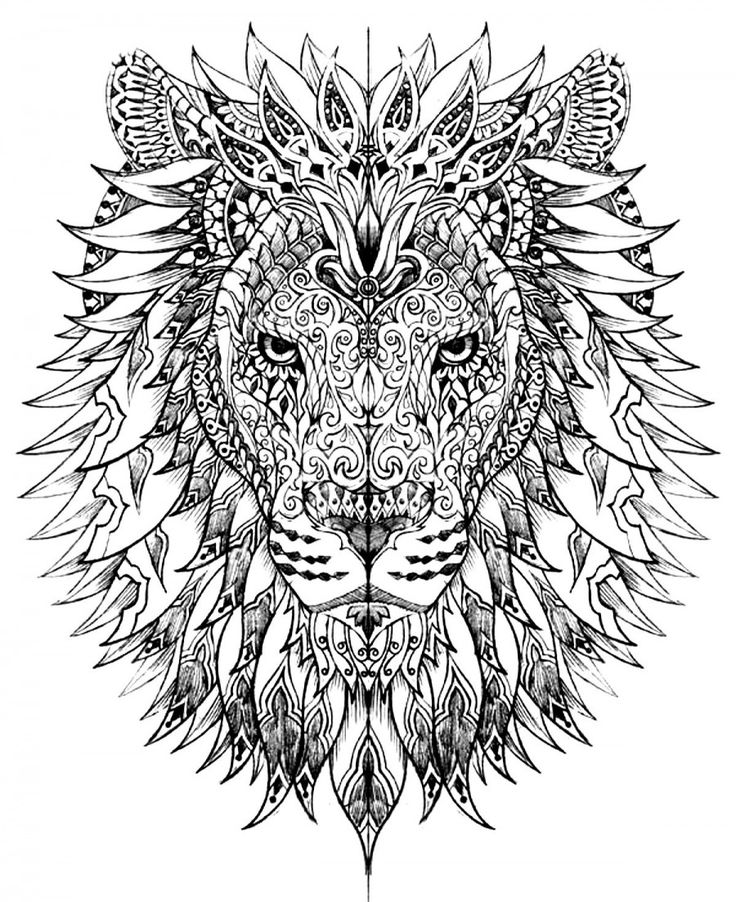 Best 25+ Lion coloring pages ideas on Pinterest | Adult coloring ...
