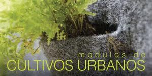 Cursos extracurriculares UNAM 2015