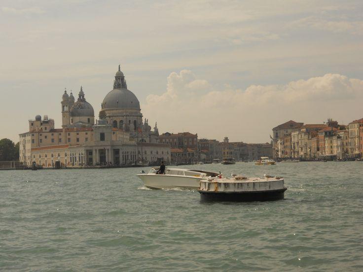 Venice The Laguna