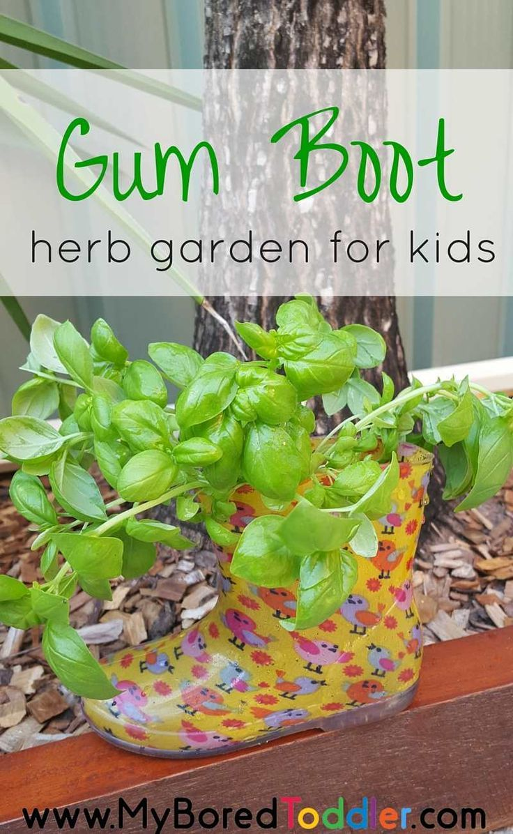Chia pet herb garden - Gardening With Kids Gum Boot Herb Garden Gardening With Toddlers Wellington Boot Gardening