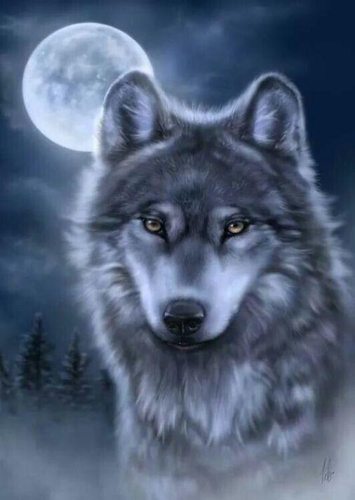 Картинки волк на аву одиночка