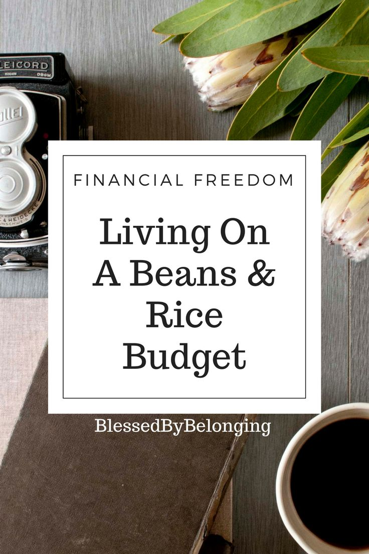 Read about our getting out of debt journey and how we adjusted our budget to save money throughout the month!     #financialfreedom #budget #moneyadvice #budgetadvice #budgettips #budgeting #frugal #frugalliving #daveramsey #debt #monthlybudgets #parenting #parentingadvice