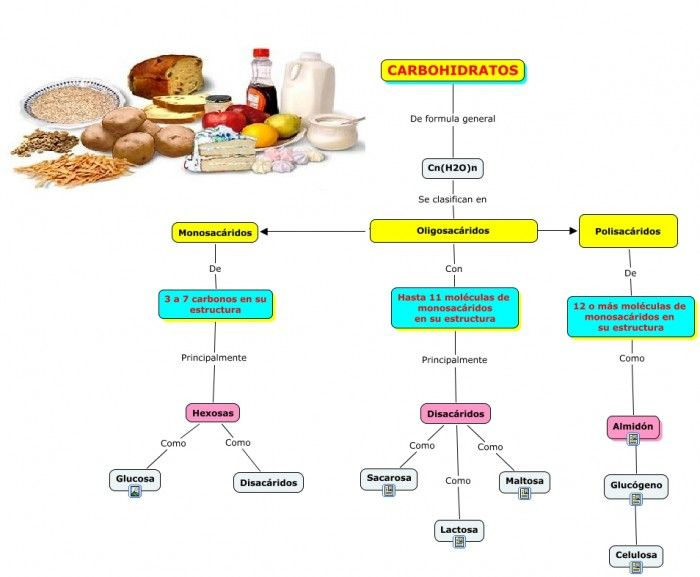 Aprender más sobre metabolismo basal alto