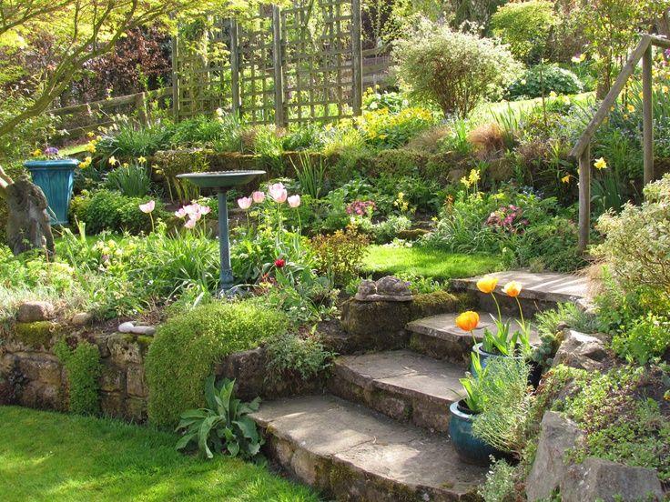 Lovely terraced garden. | protractedgarden