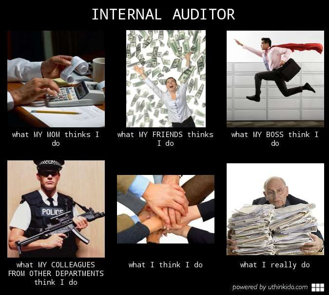 Internal Audit Meme Internal auditor : meme 7