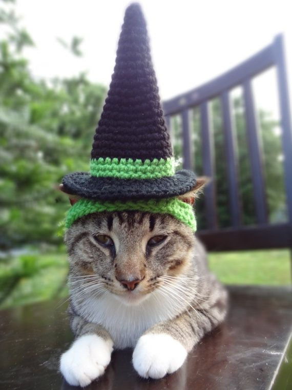 Witch Cat Dog Costume - Witch Hat for Cats and Small Dogs - Custom Colors