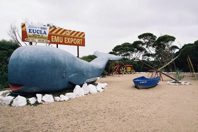 "The big Eucla Whale - One of Australia's ""Big Things"" • aussie big things Australia"