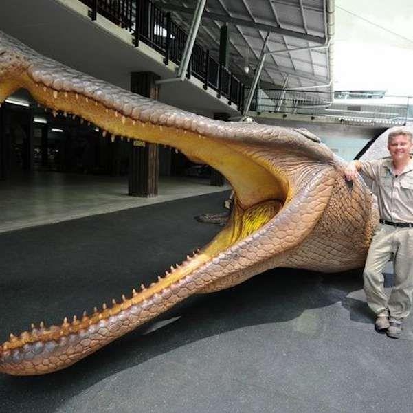 sarcosuchus-imperator-crocodile