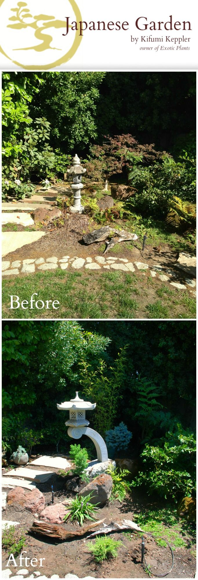 38 Glorious Japanese Garden Ideas: 38 Best Images About Backyard Before And Afters On