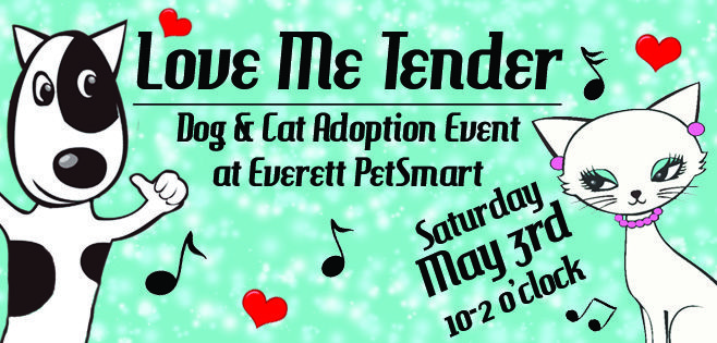 Looking for a fido or kitty to add to your home? Check out Pawsitive Alliance's pet adoption event at the Everett Pet Smart on May 3rd.