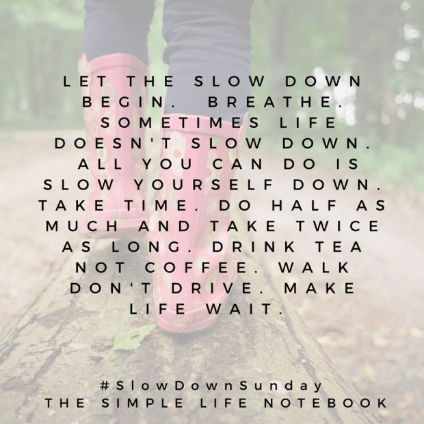 SLOW DOWN SUNDAY