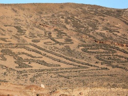 Geoglifos de Chiza, norte de Chile