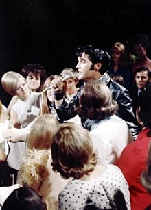 """""""Elvis - The King Of The Jungle"""" Book Review - Elvis Information Network"""