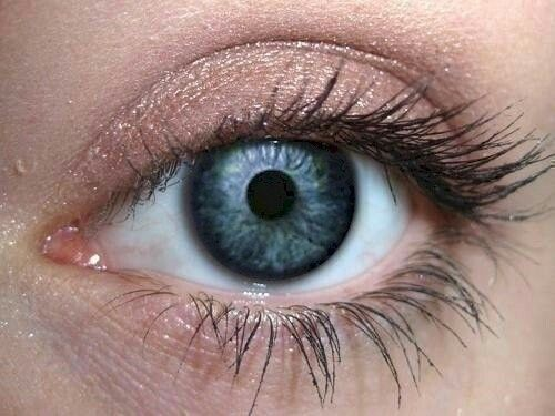 Frosting on Taupe Eye Makeup Eye Shadow Eyeliner- Natural Brown Mineral Makeup Pro Pigment Eyeshadow