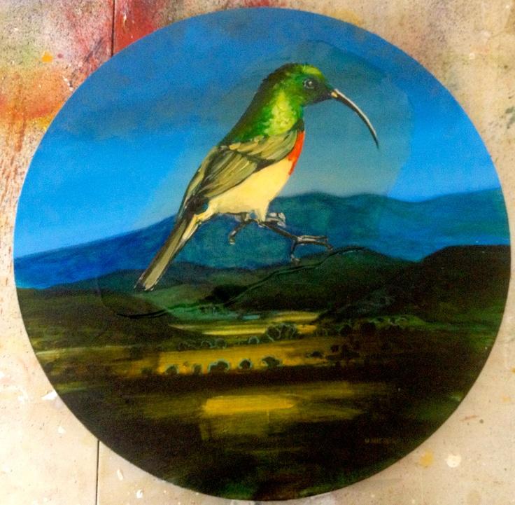 a collared sunbird, cast in amber.
