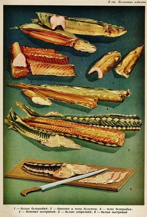Torgizdat Food- Soviet Foodstuffs