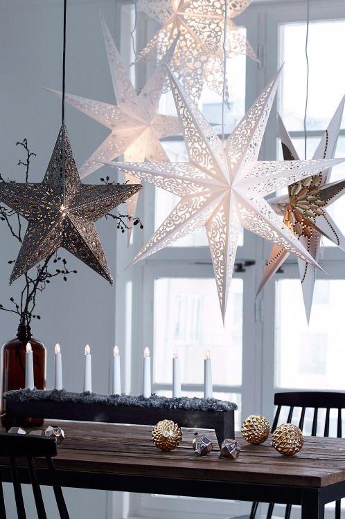 Kerststerren, prachtig