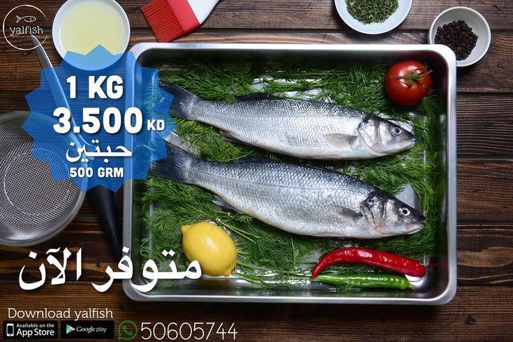 . . دك للكيلو و الكيلو فيه حبتين و التظيف عندنا مجاني  .. اطلب الان من الواتساب  او التطبيق .. . . #yalfish #newkuwait #يال_فش #new_app #fresh_fish #fish #kuwait_fish #online_fish #online_fishing #shrimp #crab #سمك #ربيان #اي_كونكت #kuwait #الكويت #توصيل_سمك #online_fish_delivery #fish_delivery #fish_home_delivery #قبقب #crab #faskar #banded_seabream #فسكر #بنت_النوخذه #من_اليال #seabass #سي_باس