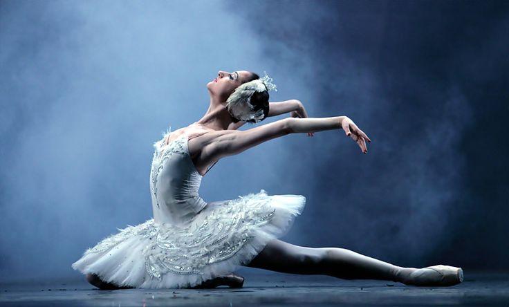 El Lago de los Cisnes: Imagenes de Ballet / Swan Lake Images | Maria Doval Ballet: Google Image, Swan Lakes, Dance Art, Dancers Portraits, Ballet Swan, Moscow Ballet, Lakes Image, Art Ideas, Dance Ballet