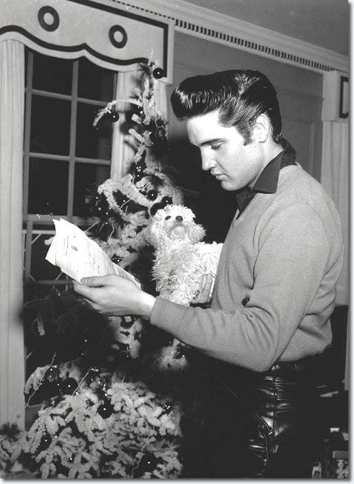 Elvis pictured at Graceland after picking up his draft notice. The Christmas tree is in the background and It looks to be dark outside.The poodle belonged to Gladys Presley and was named 'Duke' after John Wayne.