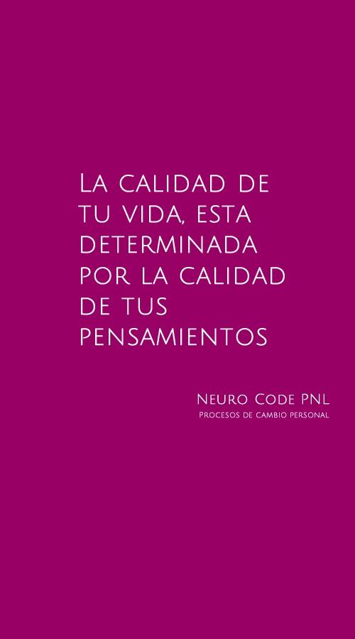 PNL y Calidad de vida Cartel promocional de https://www.facebook.com/pages/Neuro-Code/220726134727253