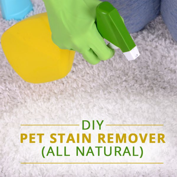 DIY - All Natural Pet Stain Remover