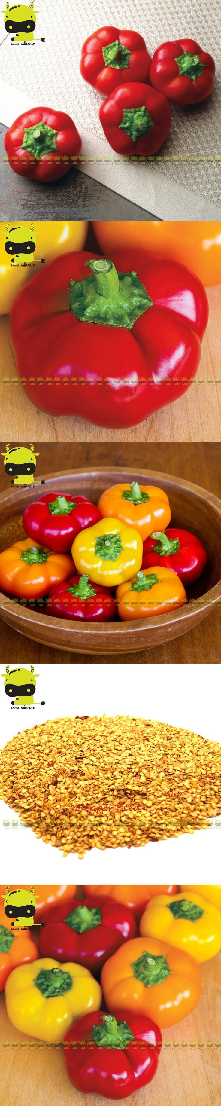 100% Real Meaty Hot Chilli Pepper Mixed Seed, 100 Seeds/Pack, NON GMO Edible Vegetable Capsicum annuum Annual Bonsai For Home
